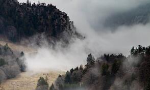 初春雨水节气饮食保健