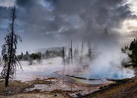 红枣的营养价值有哪些