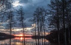 孕妇甲减患者怎样饮食