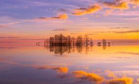 女人吃什么食物補腎