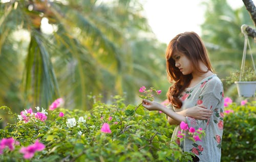 哪些植物放在卧室里有利于身体健康?