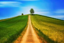 怎么怀男孩-五个方法让您轻松怀上男孩