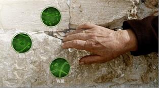 灰指甲偏方治疗方法有哪些?怎样治疗灰指甲更有效?