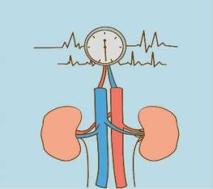 腎性高血壓能治好嗎?腎性高血壓吃什么降壓藥,需重視治療